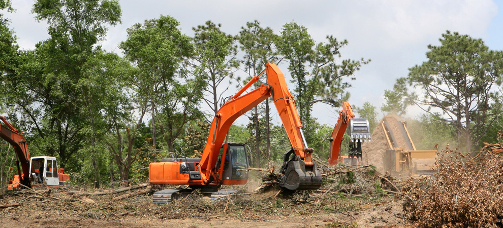 Bellevue/ Papillion/ La-Vista Land Clearing