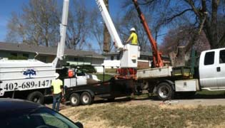 Bellevue/ Papillion/ La-Vista Tree Services